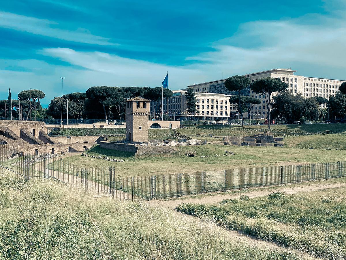 Ore 09.00 - Visita al Circo Massimo