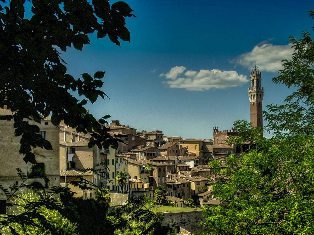 Ore 11.30 - Arrivo a Siena &  Visita Guidata di 2 ore