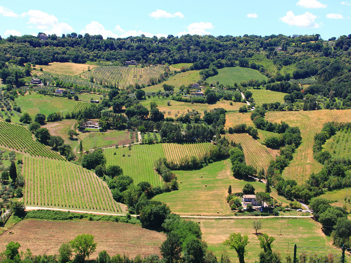 Giorno 8 - Sabato - Check out e trasferimento in Toscana con stop a Orvieto